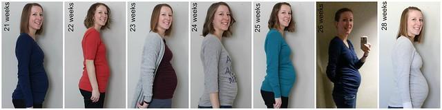 21-28 weeks