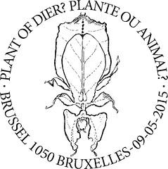 09 Plante ou animal Bxl1050 N