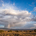 evening virga over abq by johngpt