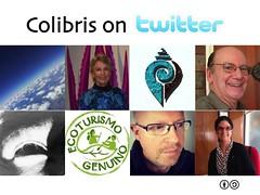 Colibris on  @planeta @AntonioSuarez1 @AntonioSuarez1 @EcotourGenuino @marehrenberg @ojoqtv @HotelXixim @stevebridger @jenmorfin
