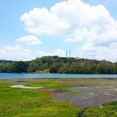 Parte del Lago Gatún visto desde el restaurante del Hotel Gamboa #Panama #pty ¿Qué les parece la vista?