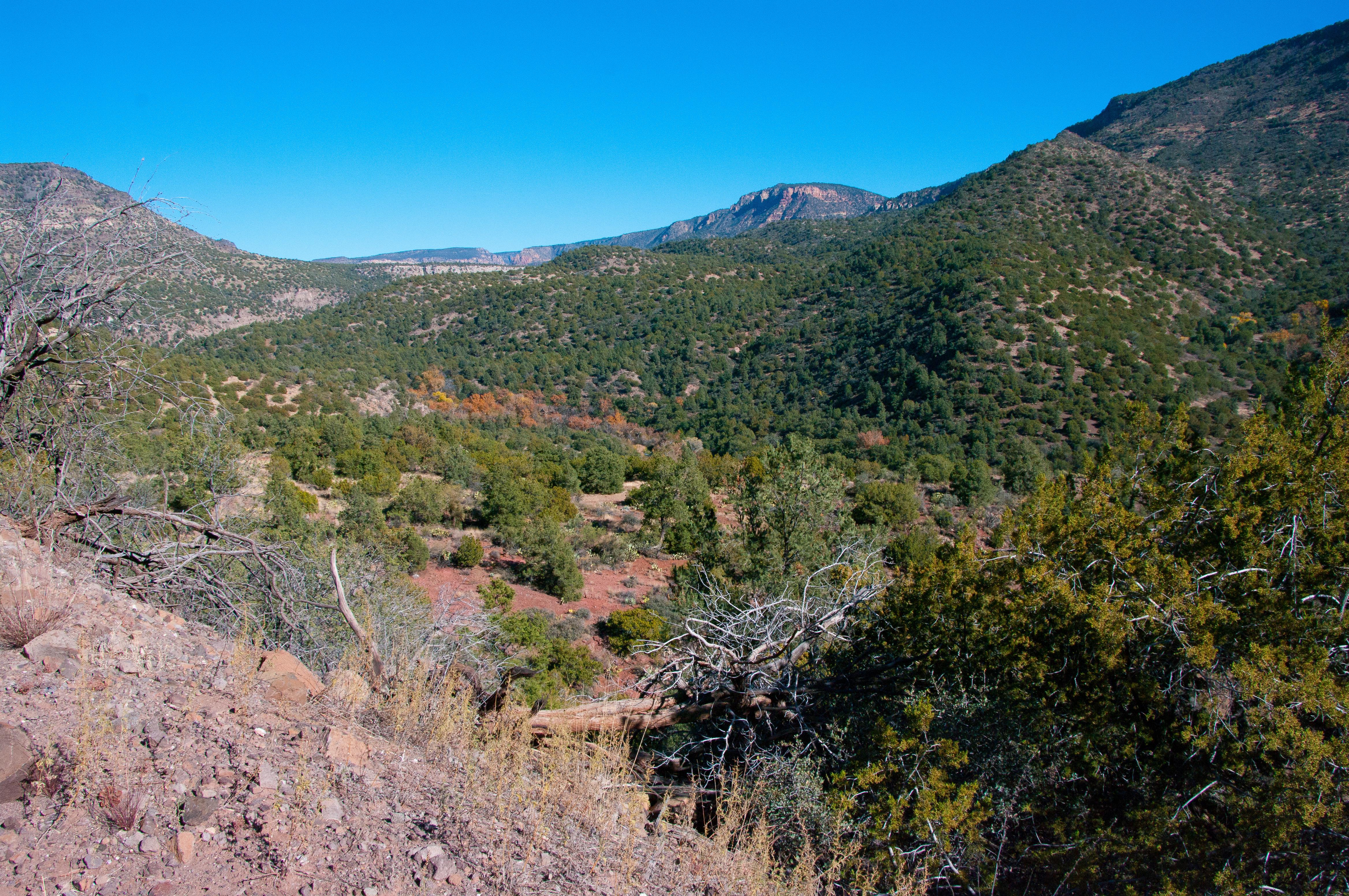 Camp Wood Az Elevation : Elevation of apache trail pine az usa topographic map