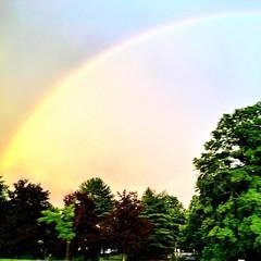 Drive by #rainbow
