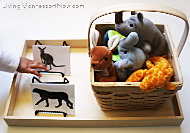 Checking out the Animals and Silhouettes Tray
