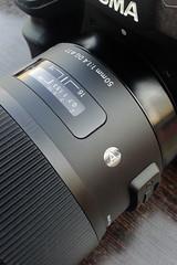 Sigma SD1 Merrill & 50mm f/1.4 Art (volle Auflösung - full resolution)