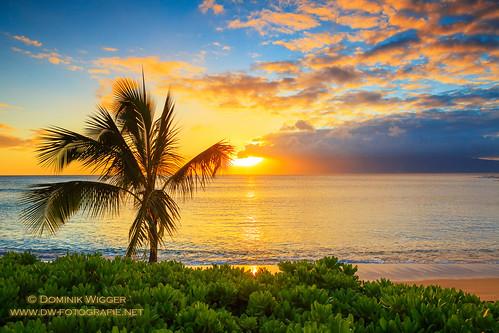 sunset vacation usa hawaii sonnenuntergang urlaub unitedstatesofamerica maui kapalua lahaina reise napili napilibay