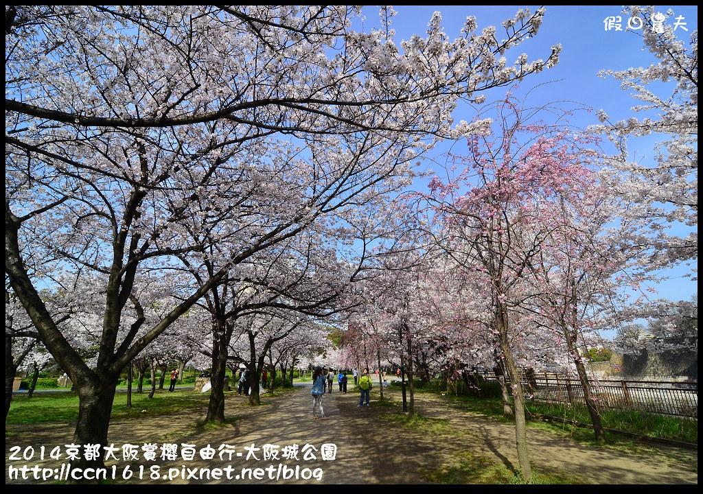 2014京都大阪賞櫻自由行-大阪城公園DSC_1685