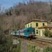 ALn 668 3246+3169---Ultimi tempi di 668 by Giacomo Casabianca---JackE656