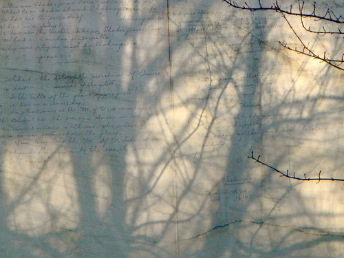 Tree Shadows and Shakespeare