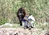 India Trip 063 - Copy