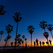 Selfie Sunset in Venice Beach by Eric Demarcq