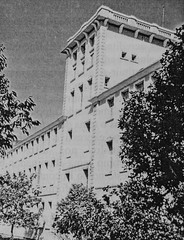 1937 Torre