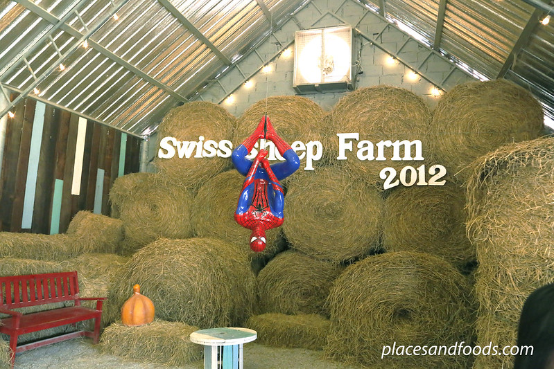cha am swiss farm 2012 spiderman