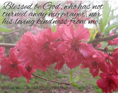 Psalm 66:20 script