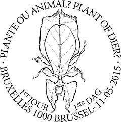 09 Plante ou animal zBxl F
