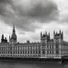 Westminster by rich lewis