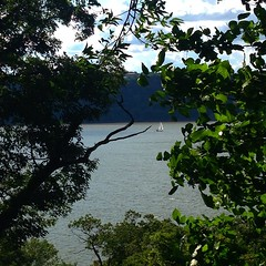 Sailboat on the river from a...