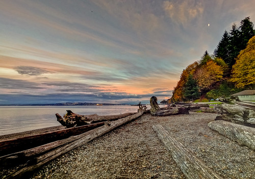 park autumn trees beach ferry clouds point washington ship waterfront cargo container driftwood tacoma hdr defiance
