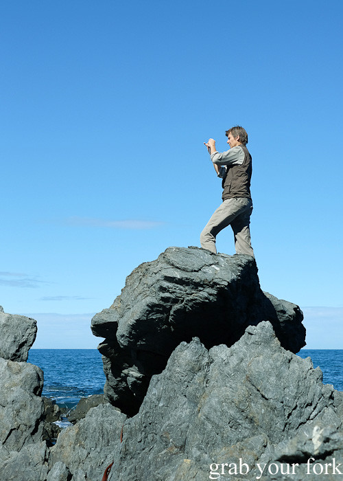 Photographing everything during the Seal Coast Safari, Wellington