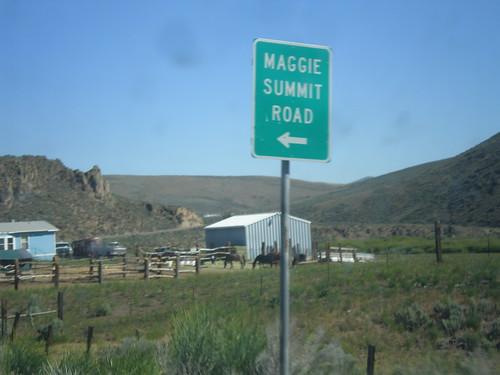 sign nevada intersection biggreensign elkocounty nv225