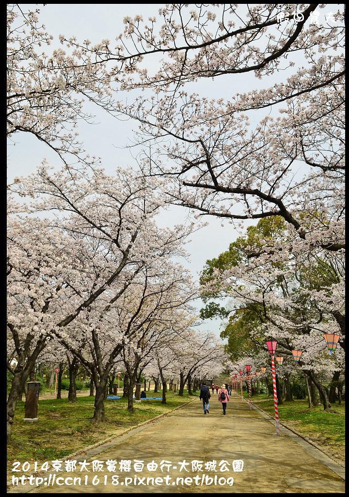 2014京都大阪賞櫻自由行-大阪城公園DSC_1891