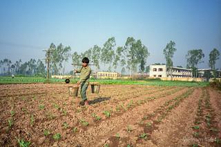 Vietnam 1994