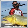Javier Henrique de Pasion Por La Pesca na FishTV com um lindo dourado fisgado nas águas do Rio Paraná em Ita-Ibate - Corrientes-AR.  #pescaamadora #pescaesportiva #pescador #pescaria #pesqueesolte #dourado #corrientes #itaibate #rioparana #baitcast #baitc