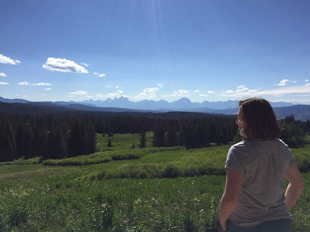 Scenic overlook of Tetons