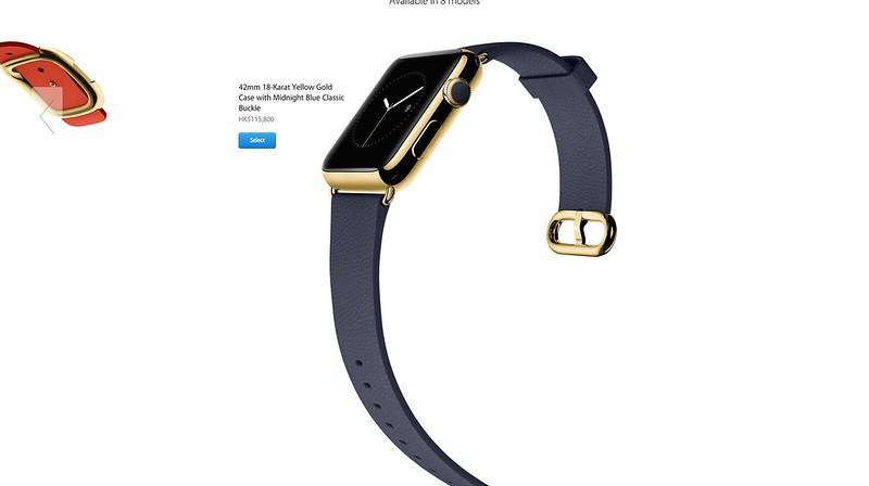 Apple Watch Edition (8)