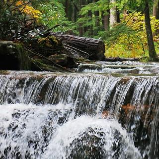 Swallow Falls SP ~ Tolliver Falls