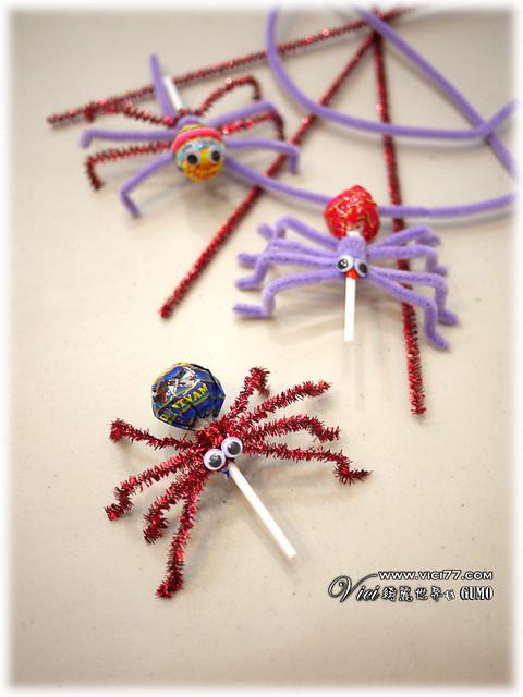 0331毛根蜘蛛033