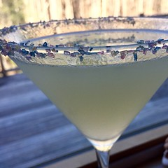 Hello Lemondrop :stuck_out_tongue_winking_eye: #cocktails #Maine #springishere How's everyone today?