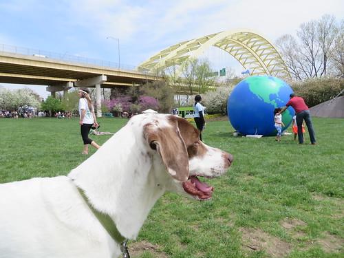 Earth Day Celebration