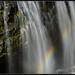 Narada Falls by Ernie Misner