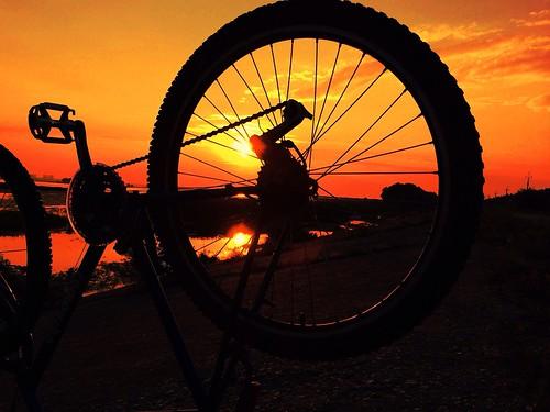 light sunset sun bike bicycle wheel silhouette gear