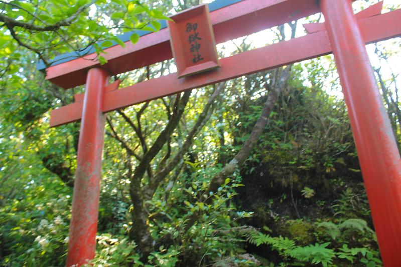 20140531-開聞岳-0390.jpg