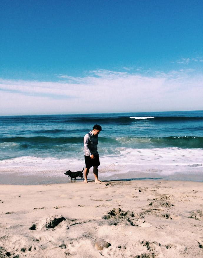 adventure, san diego, family, beach, road trip, dogs,