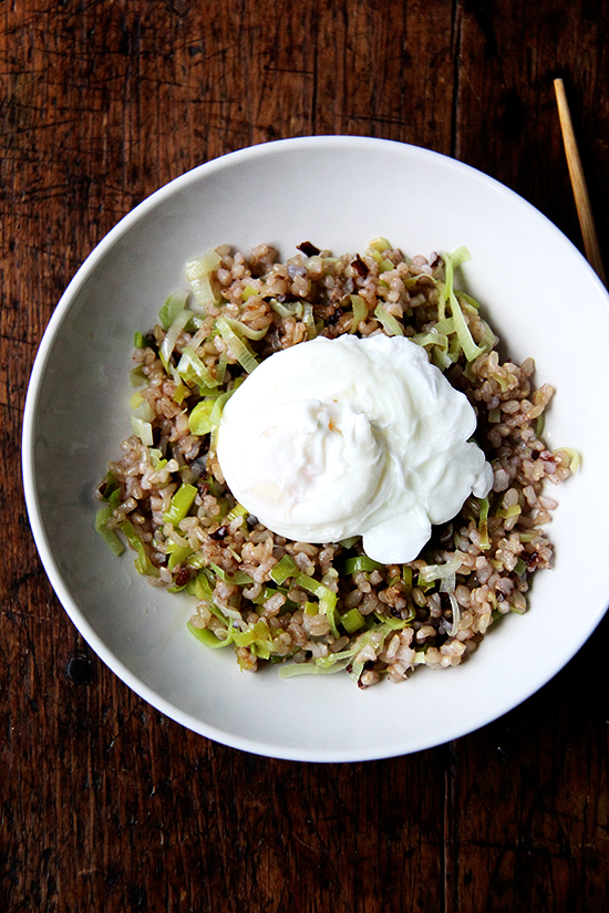 ginger-fried rice with poached egg