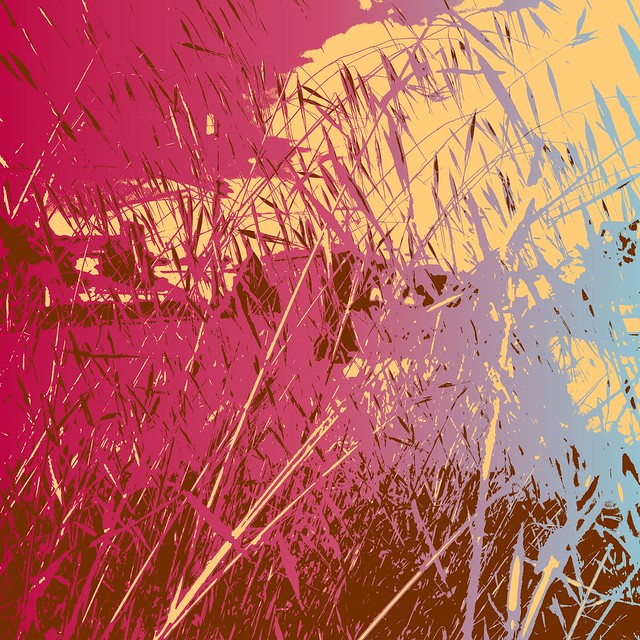 Colors - 2