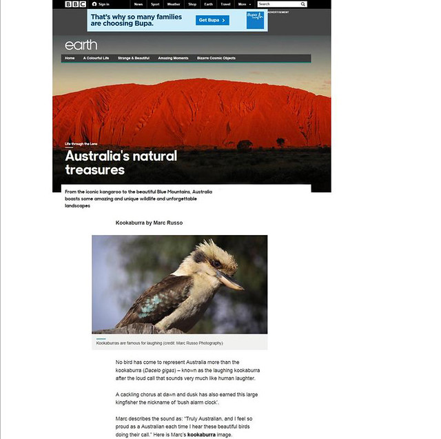 My Photograph & Write up on BBC Earth