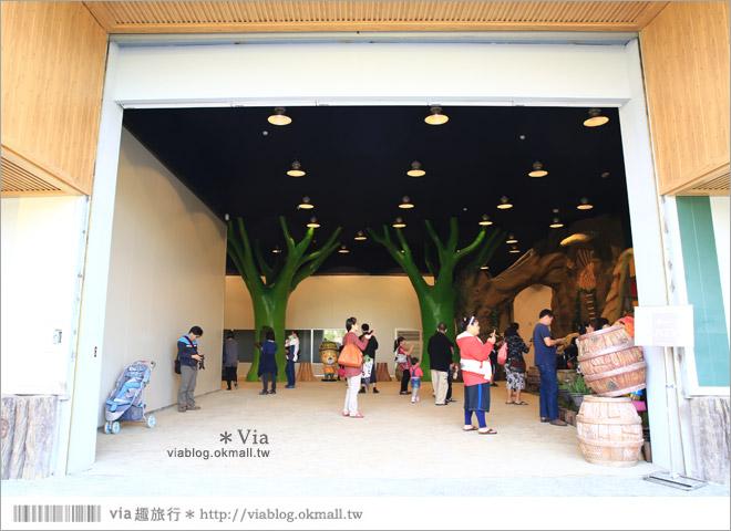 【熊大庄】嘉義民雄熊大庄森林主題園區~新觀光工廠報到!小熊的童話森林真實版14