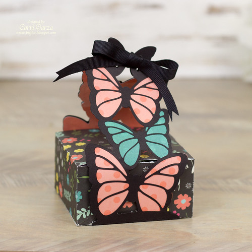 corri_garza_butterfly_box