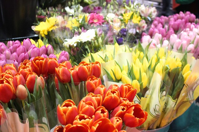 home-show-tulips