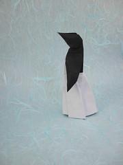 Penguin Lady