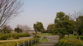 DSC_0605.jpg