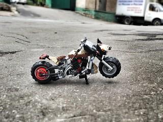 Rat moto