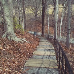 Sean's first visit to Valley Garden Park. I can't do those steps, need to find another way around...many more caches!
