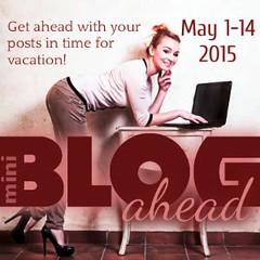 mini blog ahead 300