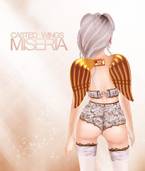 [Miseria] Casted Wings