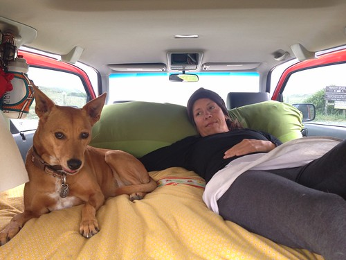 Oceanside Nap near Mendocino by mikey and wendy